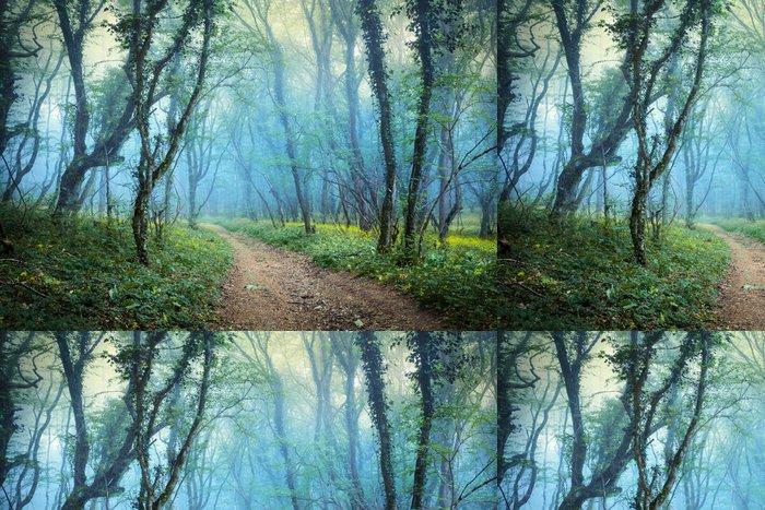 Vinylová Tapeta Tajemný jarní les v mlze - Roční období