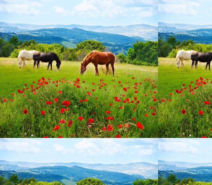 Tapeta Pixerstick Tam koně pasoucí trávě - Témata