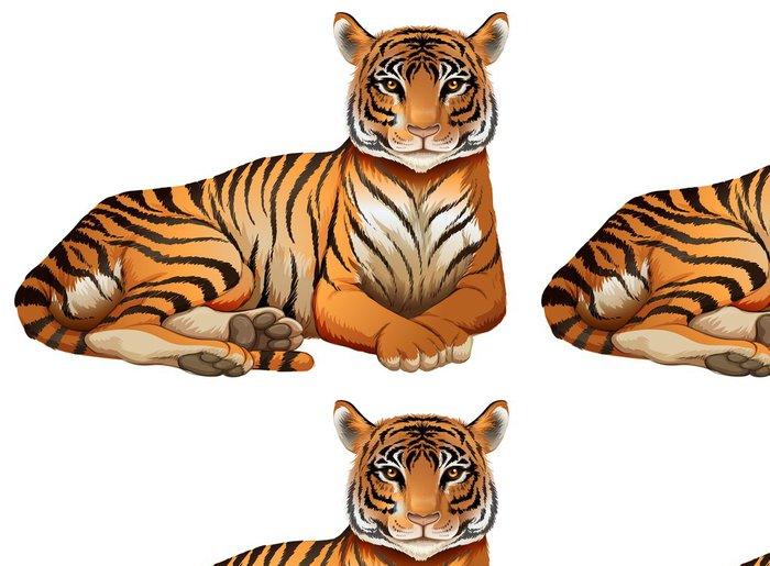 Vinylová Tapeta Tiger - Nálepka na stěny