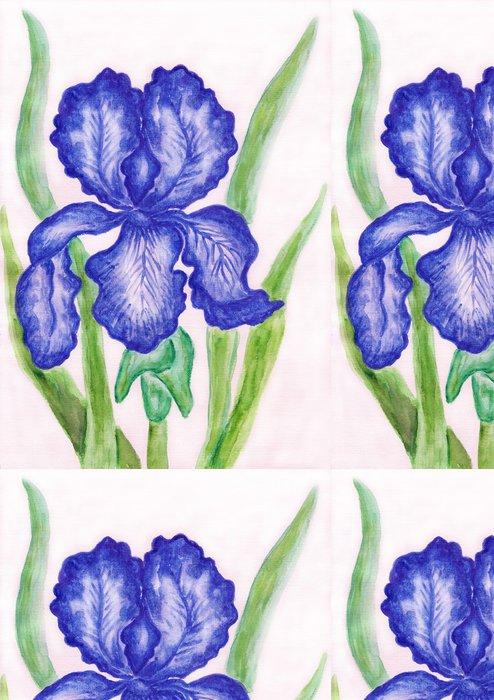 Tapeta Pixerstick Tmavě modré iris, natírání - Umění a tvorba