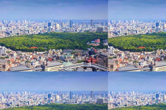 Vinylová Tapeta Tokio, Japonsko - panoráma s Park Jojogi - Asie