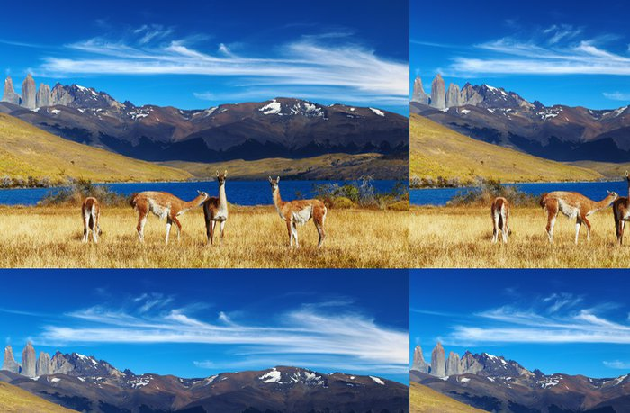 Tapeta Pixerstick Torres del Paine, Patagonia, Chile - Témata