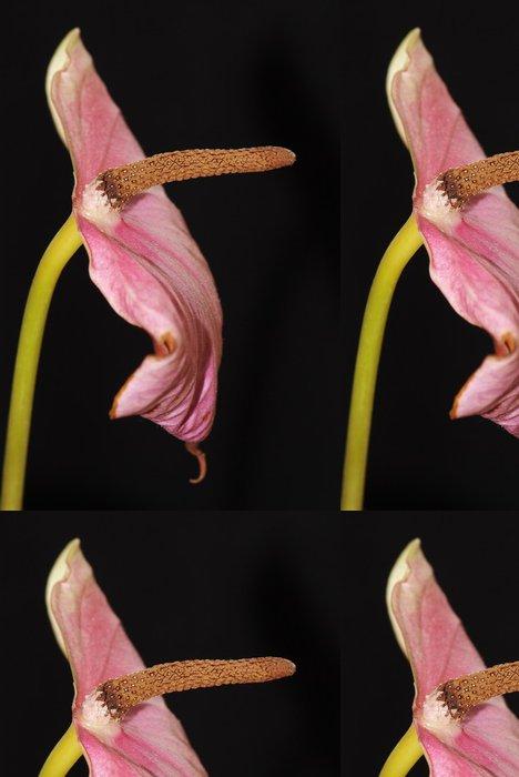 Tapeta Pixerstick Toulitka - Květiny