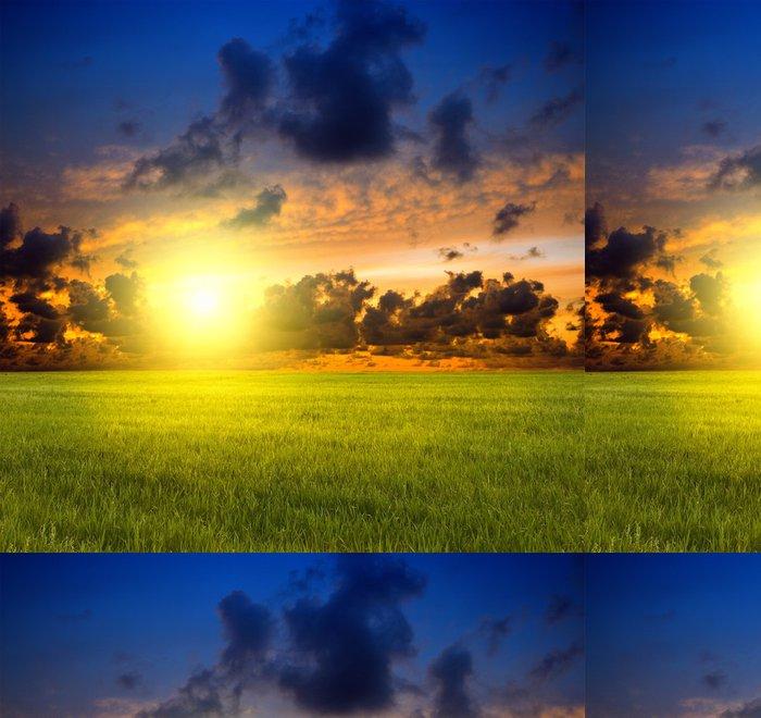 Tapeta Pixerstick Tráva a západu slunce - Venkov