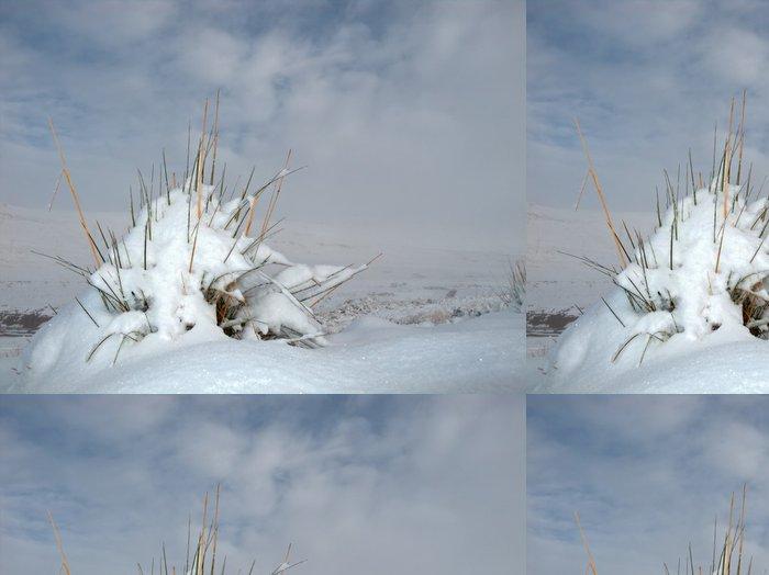 Tapeta Pixerstick Tráva chomáč pokryté sněhem proti zatažené obloze - Roční období