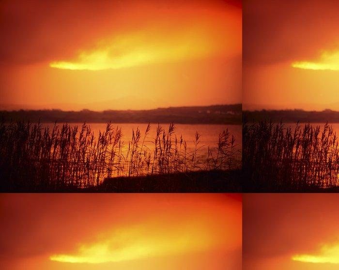 Tapeta Pixerstick Tráva Lakeside, Co Donegal, Irsko - Criteo