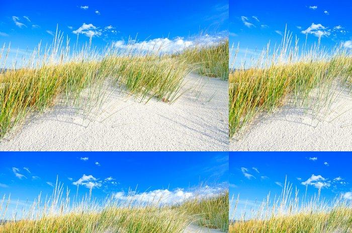 Tapeta Pixerstick Tráva na bílém písečných dunách pláže a modré nebe - Prázdniny
