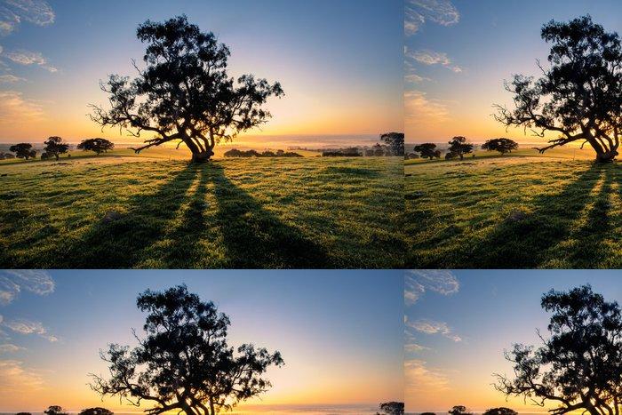 Tapeta Pixerstick Tree Shadows - Oceánie