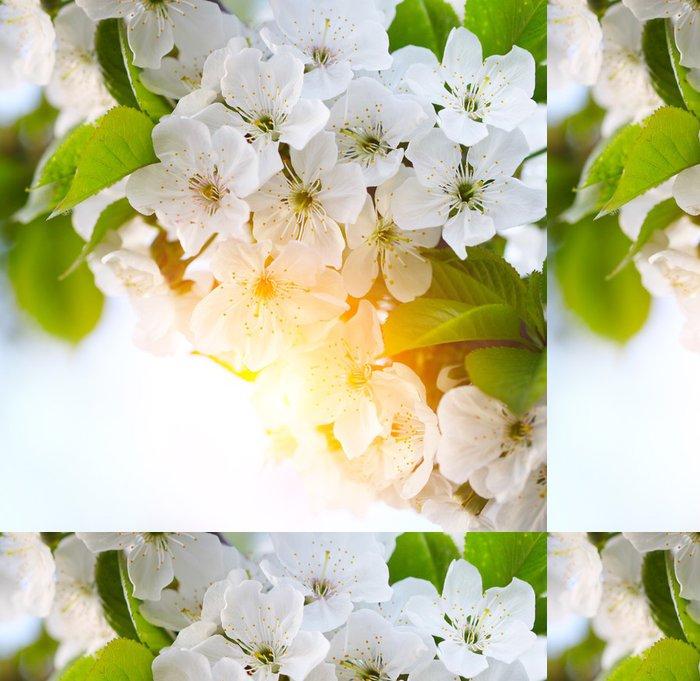 Tapeta Pixerstick Třešeň větvička v květu - Květiny