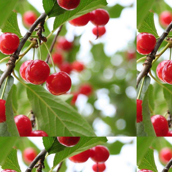 Tapeta Pixerstick Třešničkou na stromě - Ovoce