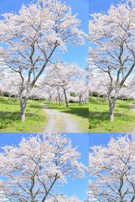 Tapeta Pixerstick Třešňové květy v plném květu - Prázdniny