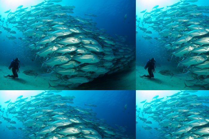 Tapeta Pixerstick Trevally Baitball - Vodní a mořský život