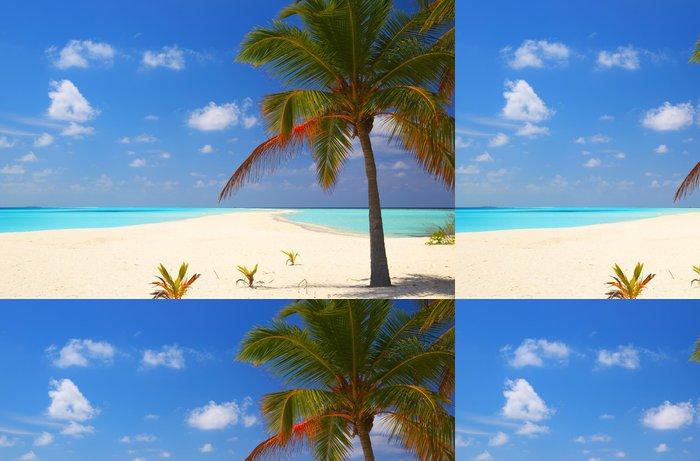 Tapeta Pixerstick Tropical Beach - Severní Amerika