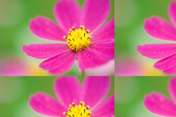 Vinylová Tapeta Tropical flower - Květiny