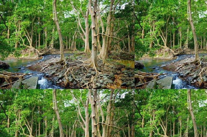 Tapeta Pixerstick Tropické džungle ostrova Mauritius - Afrika