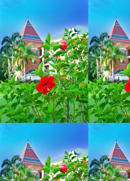 Vinylová Tapeta Tropické květiny a budovy na pozadí - Květiny