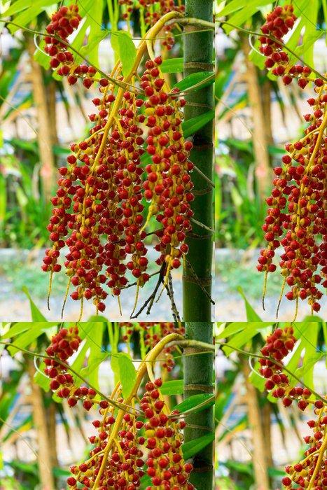 Tapeta Pixerstick Tropické palmové plody - Rostliny