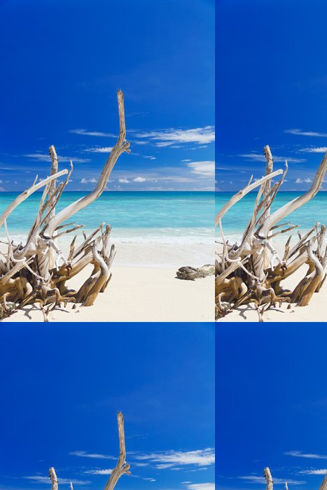 Tapeta Pixerstick Tropické písečná pláž s staré suché dřevěné pobočky - Ostrovy