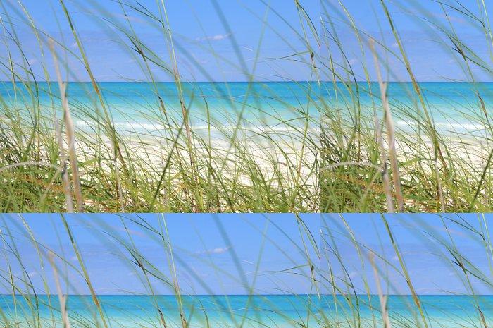 Tapeta Pixerstick Tropické pláže a trávu - Voda