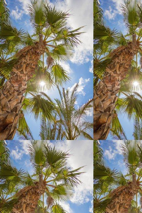 Vinylová Tapeta Tropické pozadí palem nad modrá obloha - Roční období