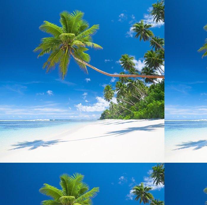 Tapeta Pixerstick Tropický ráj s palmami blues moře a bílý písek - Palmy