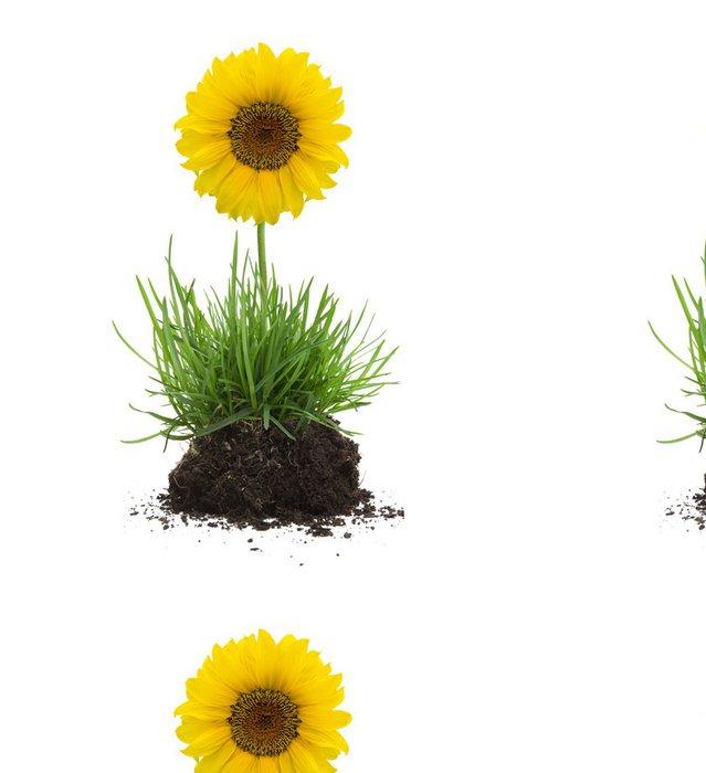 Tapeta Pixerstick Trs trávy s půdou a slunečnice - Rostliny