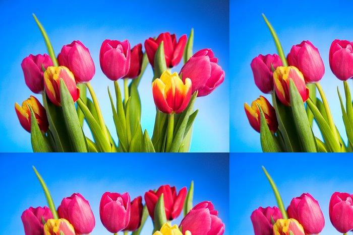 Vinylová Tapeta Tulipán květiny - Květiny