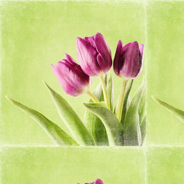 Tapeta Pixerstick Tulipán květiny - Témata