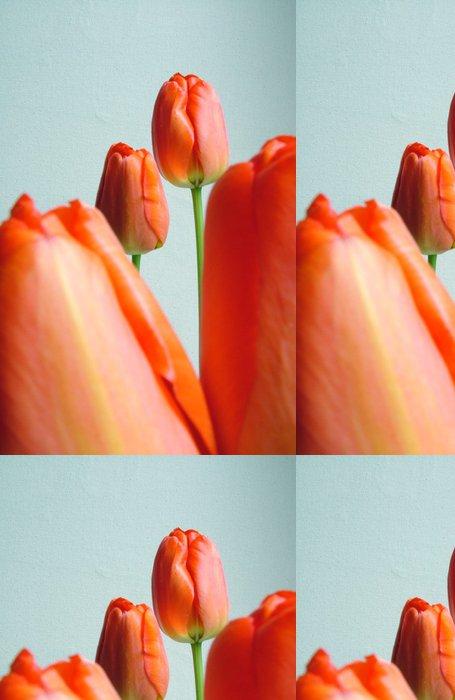 Tapeta Pixerstick Tulipán - Květiny