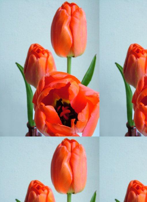 Tapeta Pixerstick Tulipány - Témata