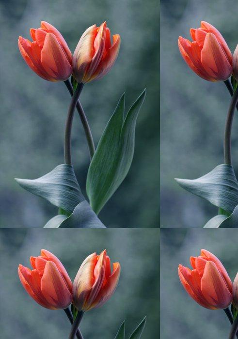 Tapeta Pixerstick Tulipany - Květiny
