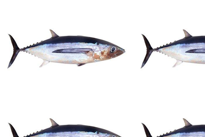Tapeta Pixerstick Tuňák mají rybí Thunnus alalunga - Nálepka na stěny