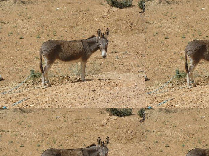 Tapeta Pixerstick Tunisie- Ane dans le Desert - Afrika