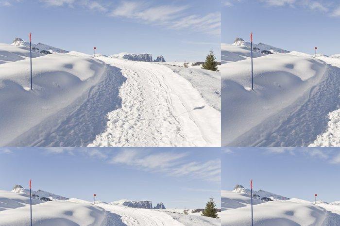 Vinylová Tapeta Turistická stezka na Seiser Alm, s Sciliar v pozadí - Hory