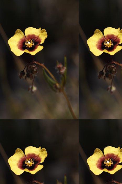 Tapeta Pixerstick Turmera (Tuberaria guttata) - Květiny