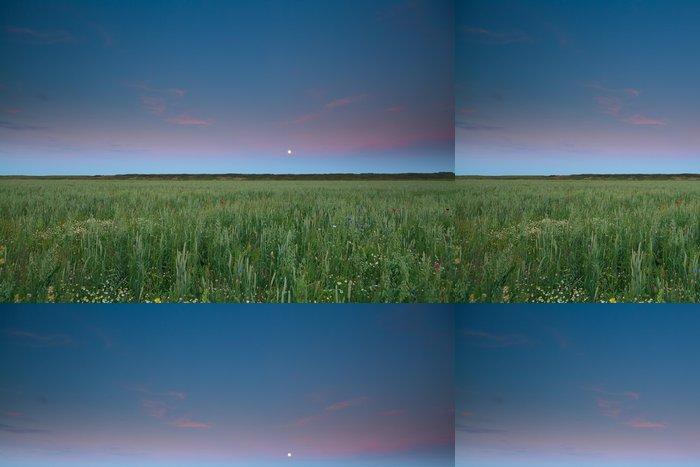 Tapeta Pixerstick Úplněk nad pšenice a ječmen pole - Roční období