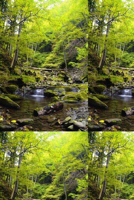 Vinylová Tapeta Úžasné řeka v národním parku - Lesy