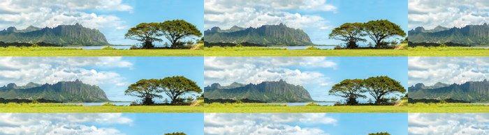 Tapeta Pixerstick V Koolau hor přes Kaneohe Bay na Windward Oahu, Havaj - Hory