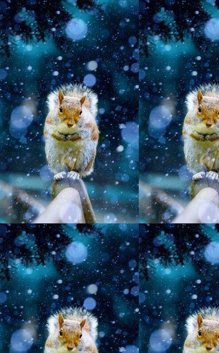 Tapeta Pixerstick Vánoční veverka občerstvení čekají na lavičce v londýnském H - Savci