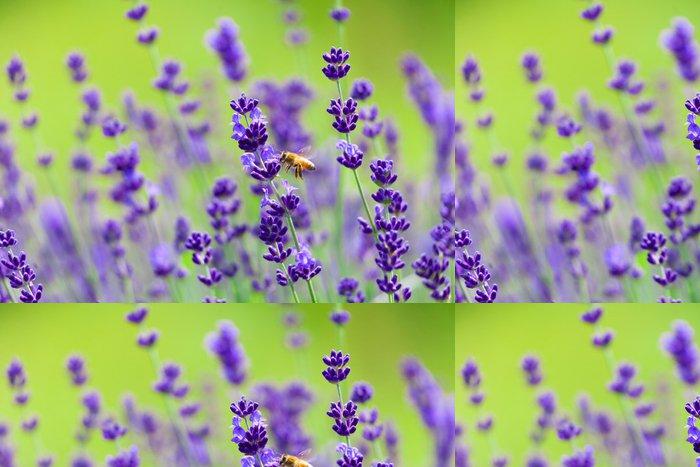 Tapeta Pixerstick Včely a levandule - Témata
