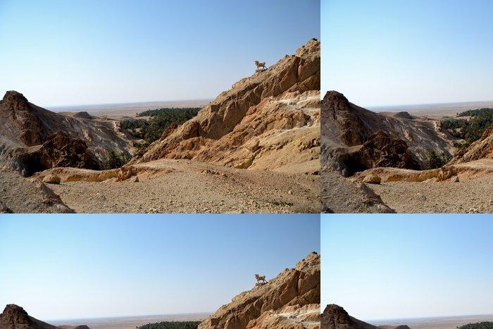 Tapeta Pixerstick Velkolepé Canyon Mides - Tunisko, Afrika - Afrika