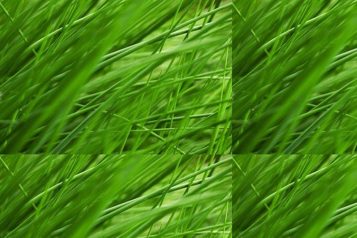 Vinylová Tapeta Velmi šťavnaté trávě - Roční období