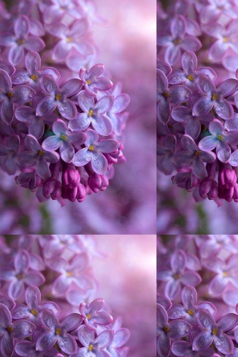 Vinylová Tapeta Větev lila - Květiny