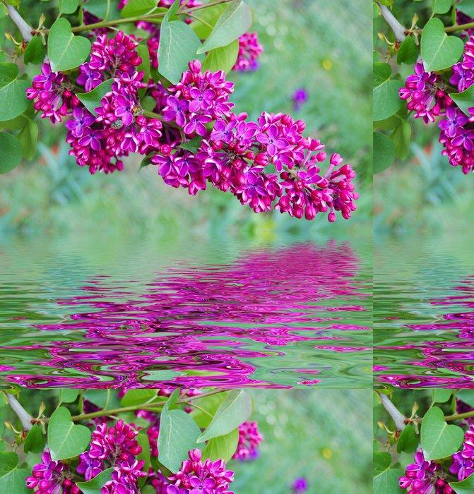 Tapeta Pixerstick Větev šeřík a odraz ve vodě - Květiny