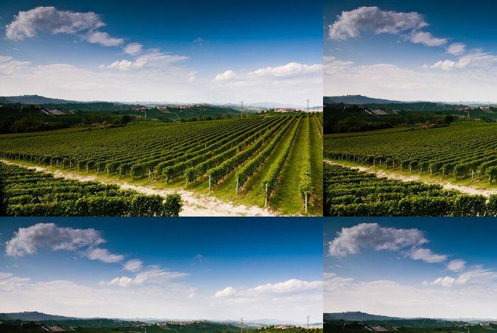 Vinylová Tapeta Vigneto Nell Langhe del Piemonte - Zemědělství