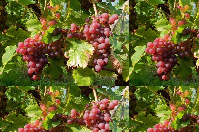 Tapeta Pixerstick Vines 11:21 - Ovoce