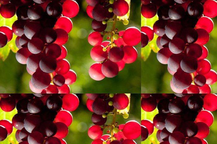 Tapeta Pixerstick Vines 11181 - Ovoce