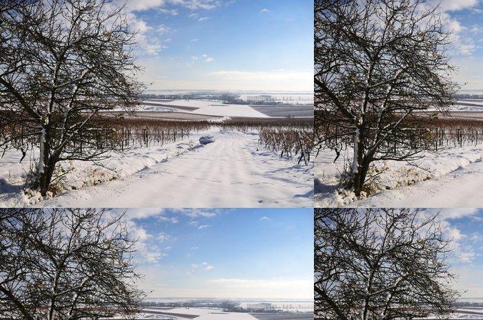 Tapeta Pixerstick Vinice v zimě. Německo - Roční období