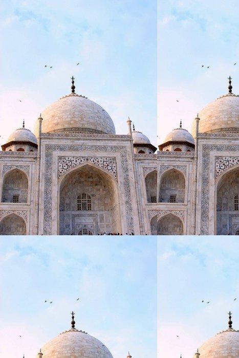 Tapeta Pixerstick Vista parciální del Taj Mahal - Asie