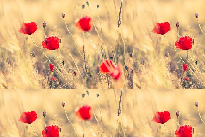 Tapeta Pixerstick Vlčí máky v létě přírodní oblasti s jasným zlaté světlo / letní pozadí / jaře pozadí - Květiny